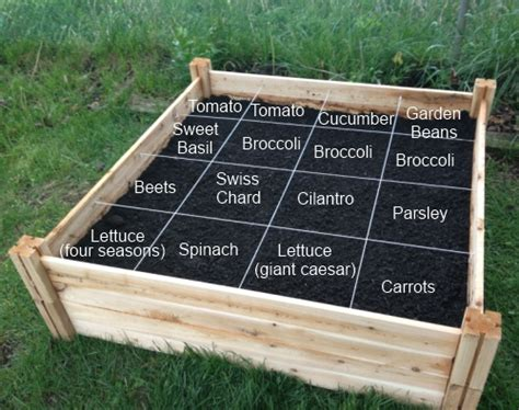 quot square foot gardening quot i m reading how to grow more