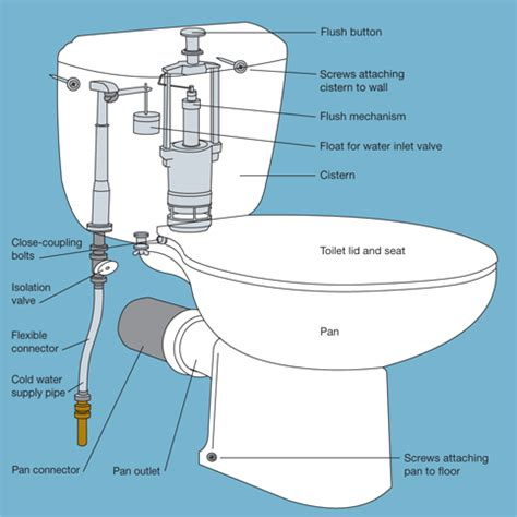 how to replace a toilet diy tips projects advice uk