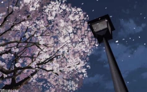 wallpaper bunga sakura gugur loker gege cerpen quot ketika cherry blossom itu gugur quot