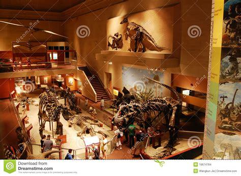 Dinosaur Bedrooms dinosaur skeleton in washington museum editorial stock