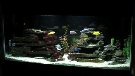 aquarium design using slate 21 best images about tank designs on pinterest african