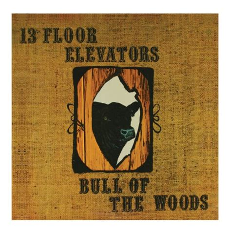 13th Floor Elevators Bull Of The Woods by Wait For My The 13th Floor Elevators
