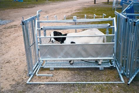 sheep shearing table plans tilt table sydell sheep equipment at lower prices