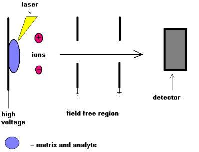 mass spectrometer block diagram diagram of a m spectrometer schematic get free image