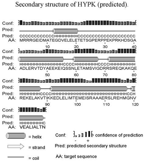 spectroscopic studies reveal conformational flexibility of