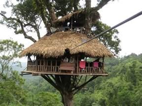 treehouse house tree house design ideas for modern family