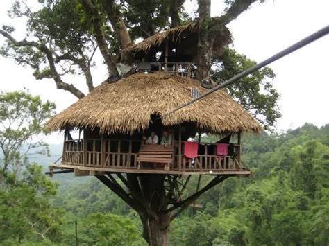 simple tree house designs and plans tree house design ideas for modern family inspirationseek com