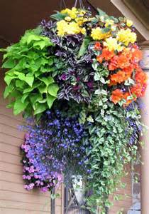 Galerry ideas design hanging baskets