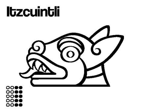 imagenes aztecas para descargar dibujo de los d 237 as aztecas el perro itzcuintli para