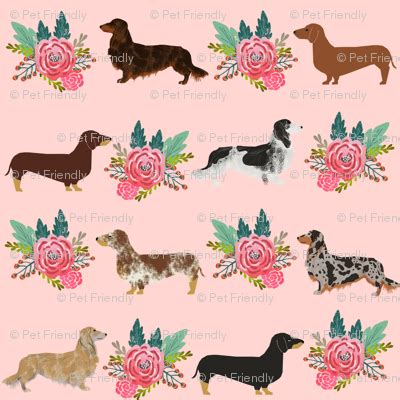 Pet Friendly Fabric by Dachshund Florals Dogs Pet Dogs Haired Doxie