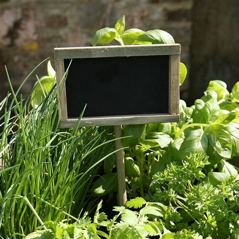 herb window box personalised window box crate with herb seeds by plantabox