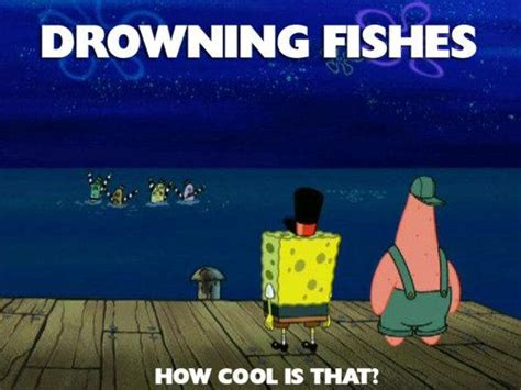 Spongebob Fish Meme - spongebob meme fishes can be drowned the spongebob meme