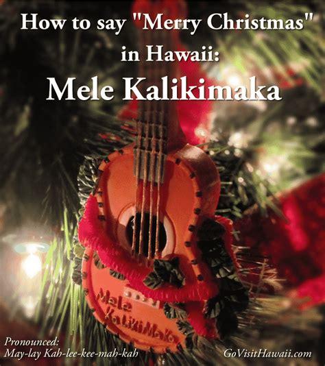 merry christmas  hawaii  visit hawaii