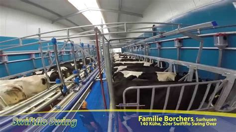 swing over dairymaster schnellaustrieb swing over melkstand youtube