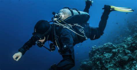 bcd dive scuba weight harness dive rite harness elsavadorla