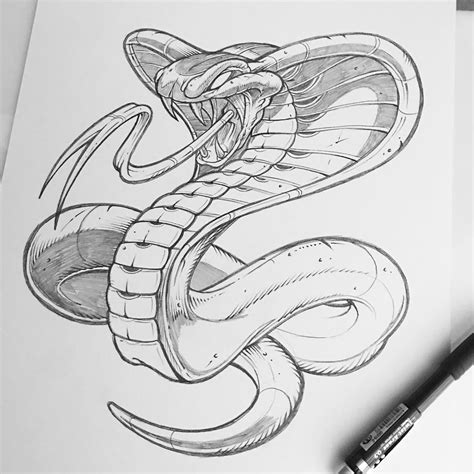 tattoo cartoon sketch finished up this weekend cobra pencil illustration