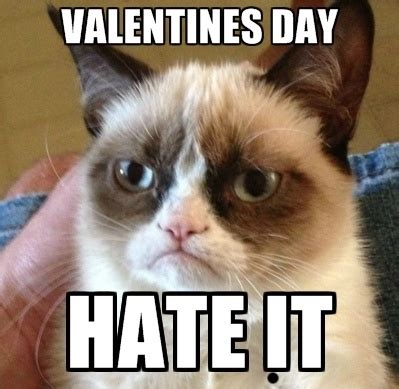 valentines grumpy cat what to do on s day restaurants aside froyo