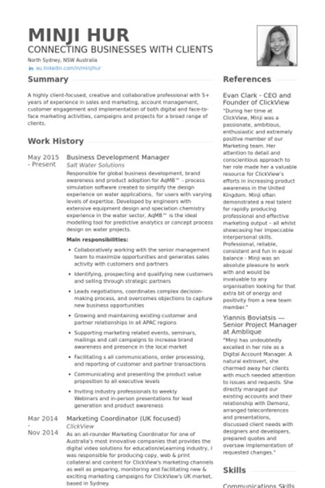 Business Development Manager Resume Summary by Business Development Resume Sles Visualcv Resume