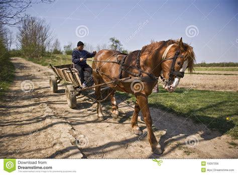 pferd und wagen pferd mit wagen lizenzfreies stockbild bild 19297056