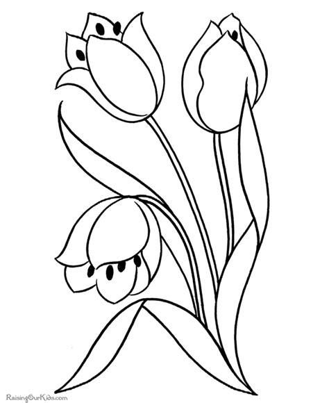 parts of a flower coloring page coloring home