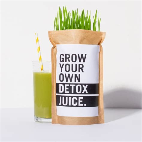 Make Your Own Detox Drink by 9 Items To Help You Keep The Most Common New Year S