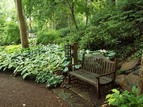 Woodland Shade Gardens for Kaye Blomeke