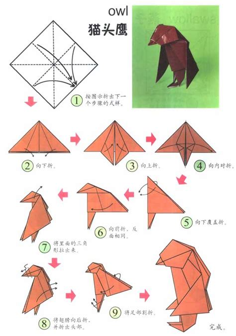 Owl Origami Diagram - free coloring pages how to make an origami owl origami