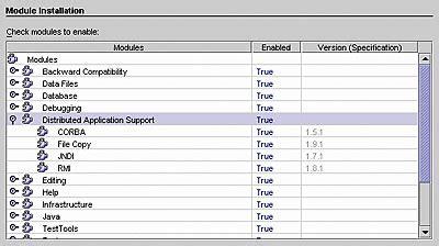 tutorial rmi java netbeans rmi corba and netbeans java tutorial developer fusion