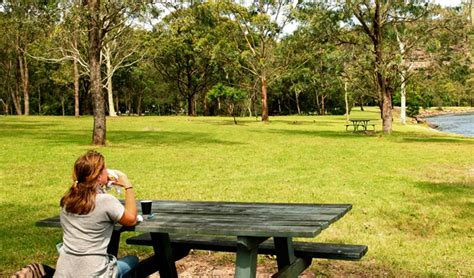 parks with picnic tables near me davidson park picnic area and boat r nsw national parks