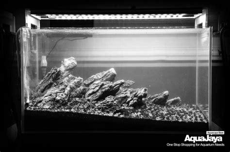 membuat aquascape iwagumi style membuat aquascape aquajaya