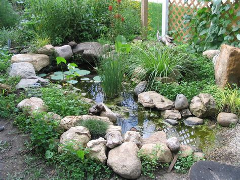 How To Build A Small Backyard Waterfall Wildlife Pond Our Tiny Homestead