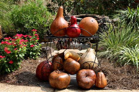 southern lagniappe decorating for fall with gourds