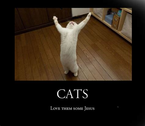 Jesus Cat Meme - jesus cat picture ebaum s world