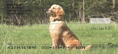 golden retriever personal checks watchful golden retrievers checks watchful golden retrievers personal checks