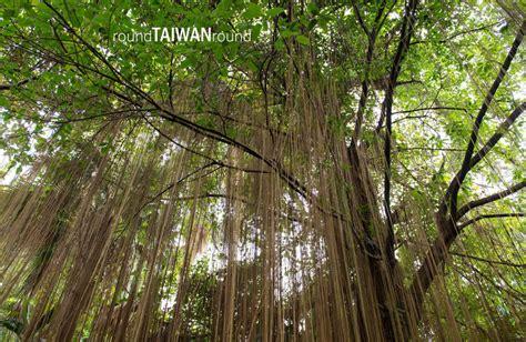 Taipei Botanical Garden Taipei Botanical Garden Taiwan