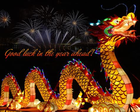 happy  year chinese wallpaper  fireworks  dragon greeting card   android mobile