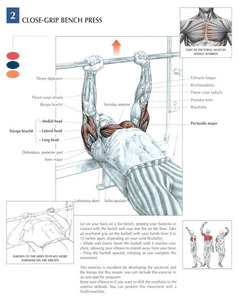 muscles used bench press close grip barbell bench press peak fat loss and fitness