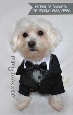 mimi y tara patrones de ropa para perros pinterest the world s catalog of ideas