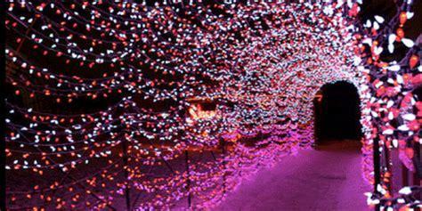 st louis botanical garden lights garden glow at the missouri botanical garden st louis
