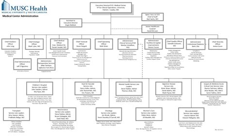 hospital organizational chart 10 best images of hospital departments organizational