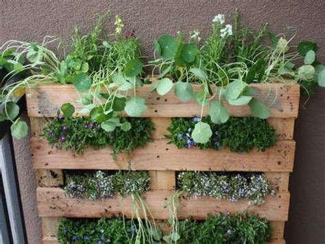herb container garden ideas the world s catalog of ideas
