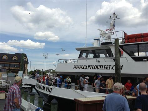 captain lou fishing boat freeport 17 best images about capt lou fishing trips on pinterest