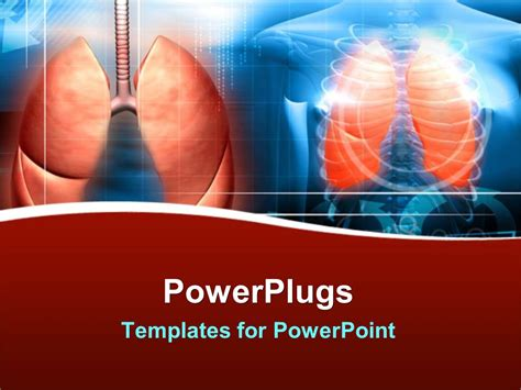 Powerpoint Template X Ray Of Human Body Showing Ribs And Lungs 20172 Human Powerpoint Template