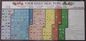 your daily meal plan