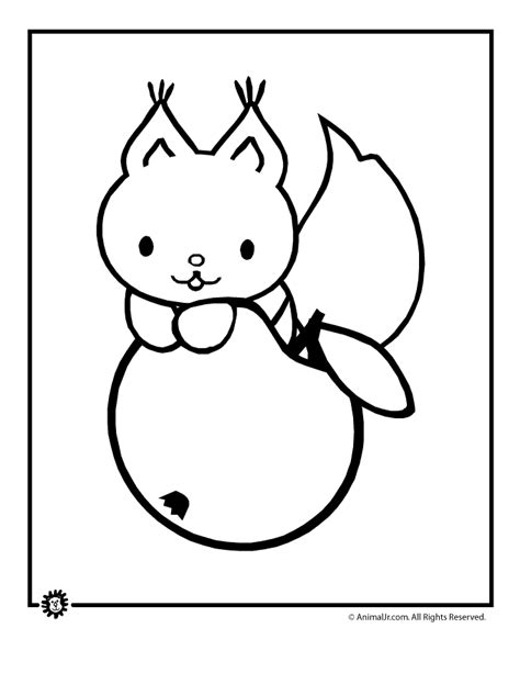 cute squirrel coloring pages cute animal coloring pages memes