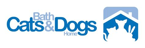 dog bathtubs for home bath cats and dogs home trustees kennel break