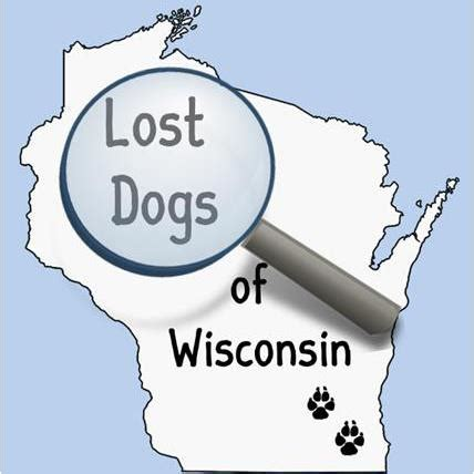 lost dogs of wisconsin resources