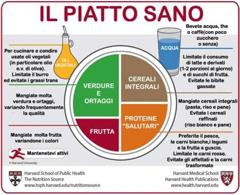 dieta alimentare sana piramide alimentare alimentazione sana piatto sano