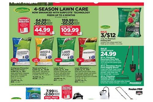 ace true value hardware coupon