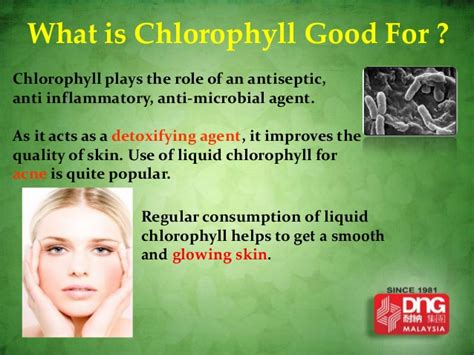 Is It A Part Of Detoxing To Become Anger Randomly by Chlorophyll Plus Guarana Presentation